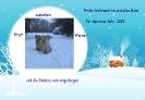 Weihnachten 2014_1